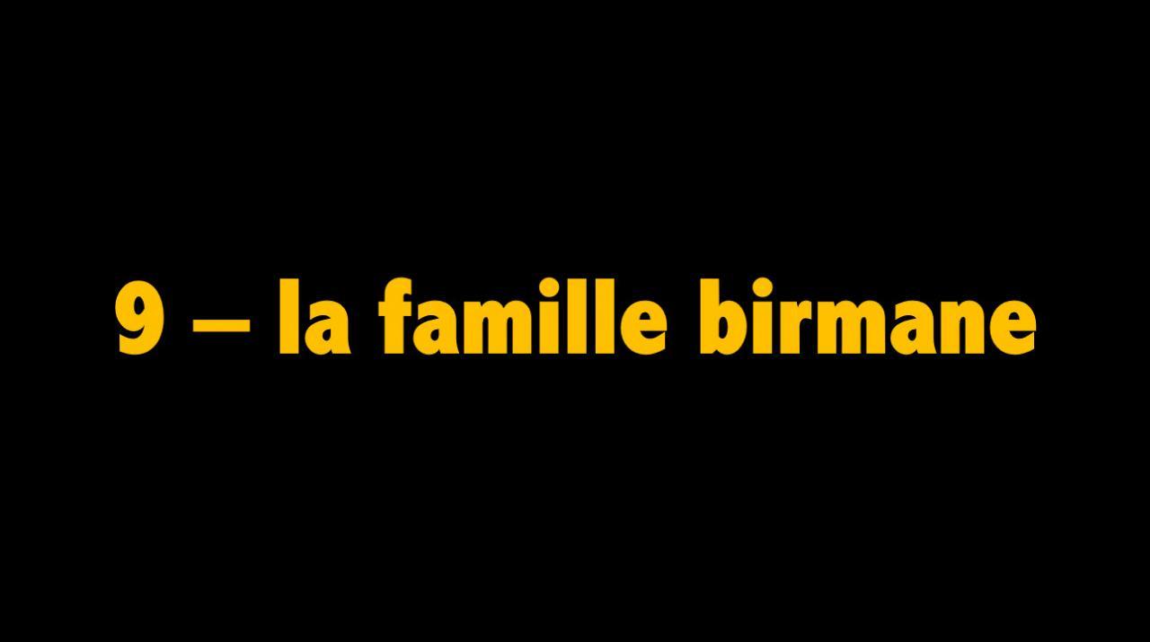 09 La famille birmane