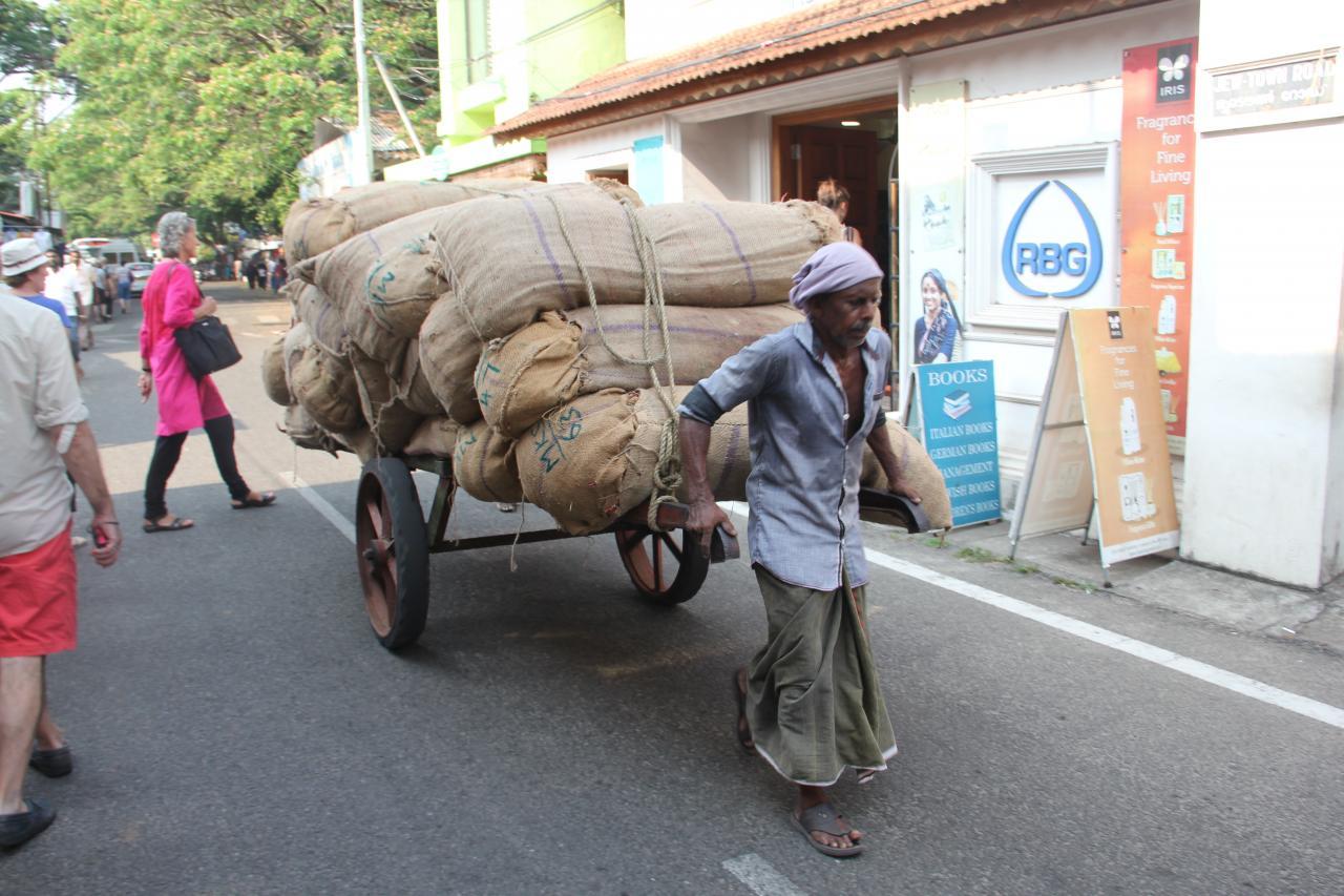 Les indiens (Inde du sud)