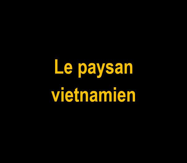 _Le paysan vietnamien