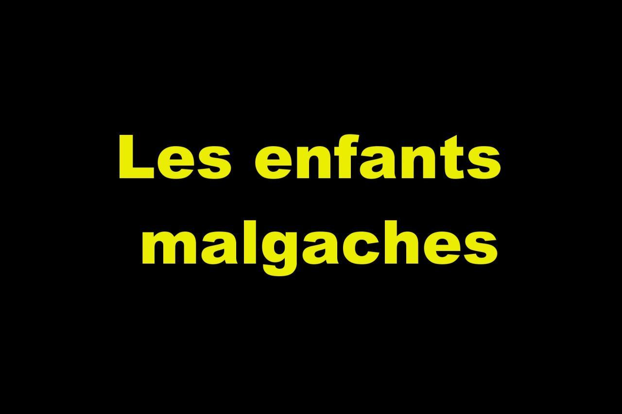 Les malgaches